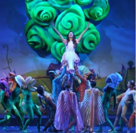 Alice nel Paese delle Meraviglie, il Musical
